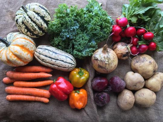 2018-02-16-Submitted-Thompson-Produce-CSA-Box-3